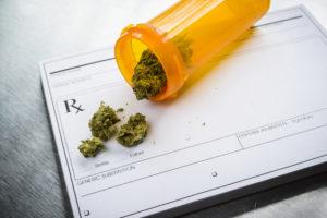Medical Marijuana Online Conference @ Online
